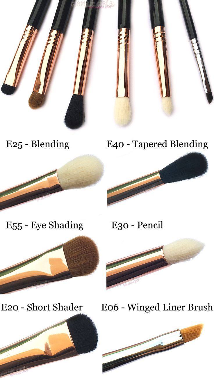 Best Eye Makeup Brushes by Sigma Beauty Eye makeup