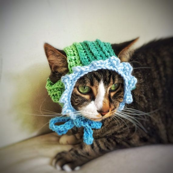 Cat HatDog Crochet DogCat Hat Pets Beanie Dog BonnetHandmade Handmade Cat New