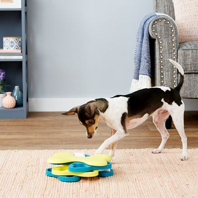 Interactive Dog Toys Exercise Nina Ottosson by Outward Hound Dog Tornado Interactive Dog Toy - Chewy.com