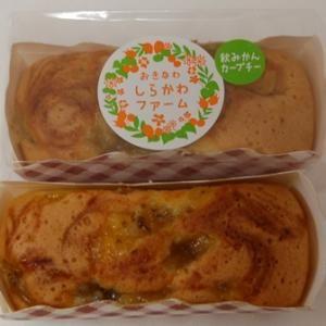 パウンドケーキ10個入(5種類)