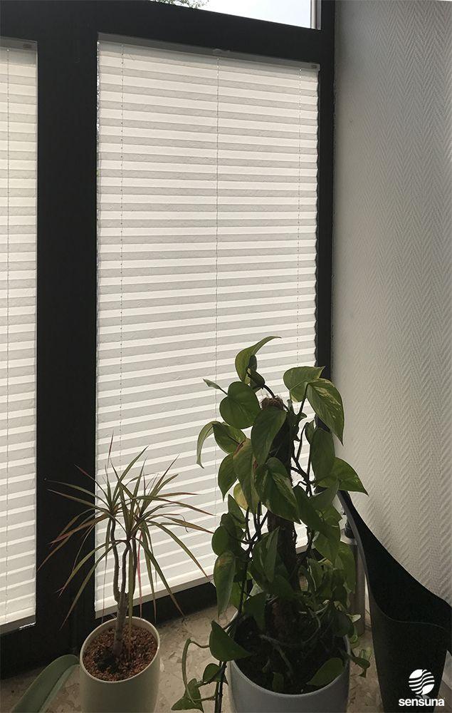 Hervorragend Beige Plisses Mit Guten Wärmeschutz Eigenschaften   Bringt Vor Allem Im  Sommer Frische In Die Innenräume