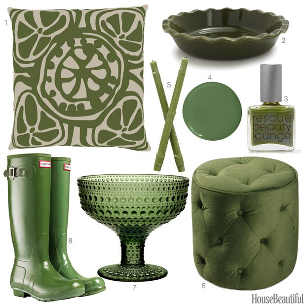 Color Of The Week: OIive Green