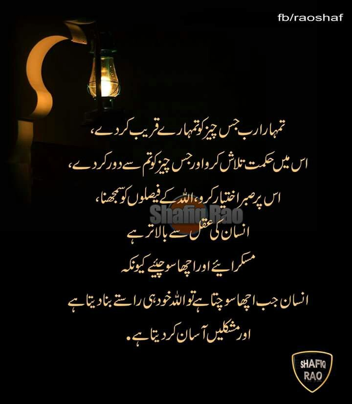 Pin By B On Urdu Urdu Quotes Islamic Quotes Muslim Quotes