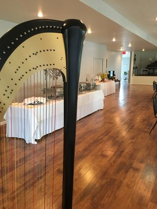 Wedding Reception Music Chillicothe OH Harpist - Reception at Sunroom at the  Brick, Frankfort,