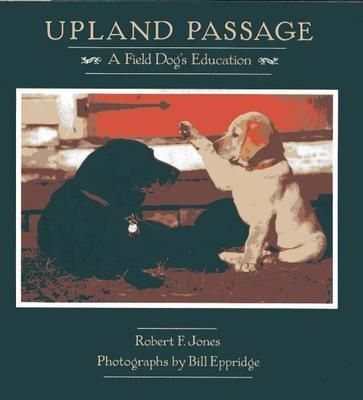 """upland passage a field dog'd education growing up """"field"""