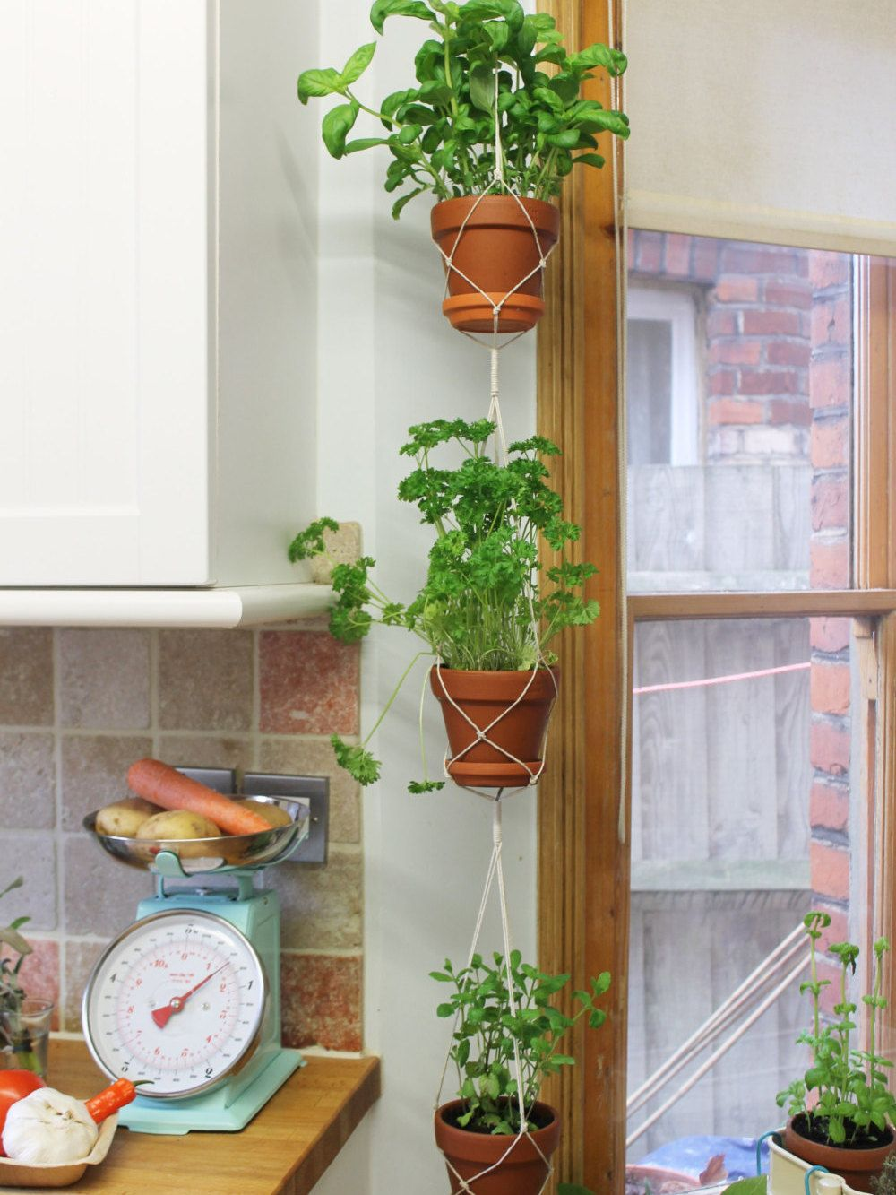 Triple Hanging Planter In 2019 Hanging Planters 400 x 300