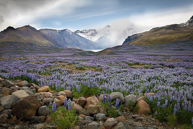 #ICELAND #travel #landscape #photography