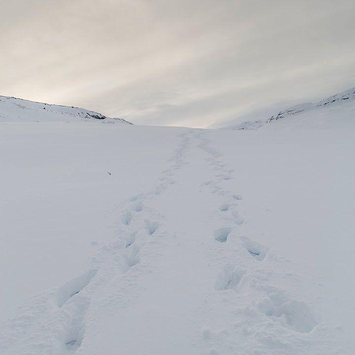 Footsteps to the horizon... ________________ #dekography # ...