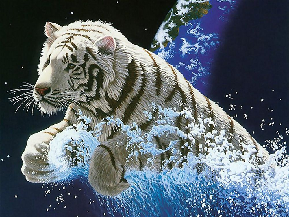 3d Animal Wallpapers Places To Visit Animals Tiger Wallpaper