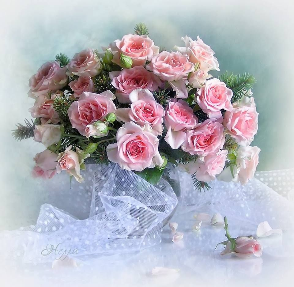 Pin by didona balazs on aranjamente florale pinterest explore la rose flowers and more izmirmasajfo