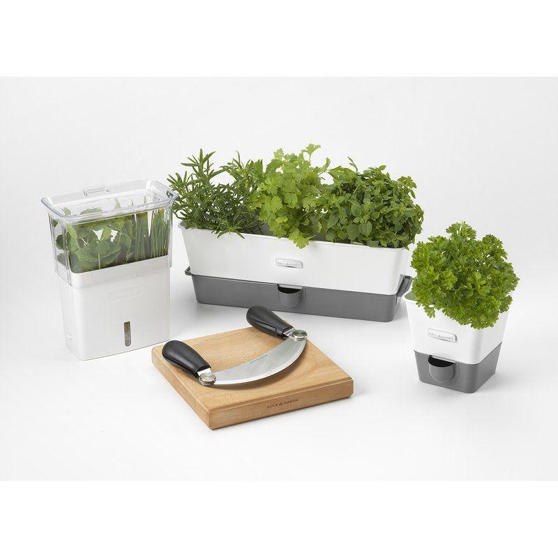 Indoor Herb Garden Self Watering Carbon Steel P*T Planter 400 x 300