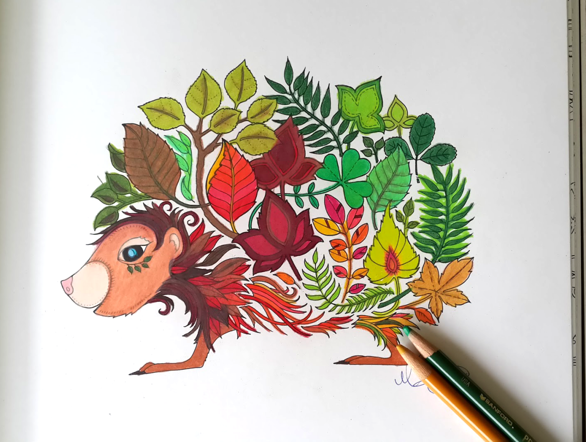 Hedgehog colored page from the Enchanted Forest Coloring Book ...