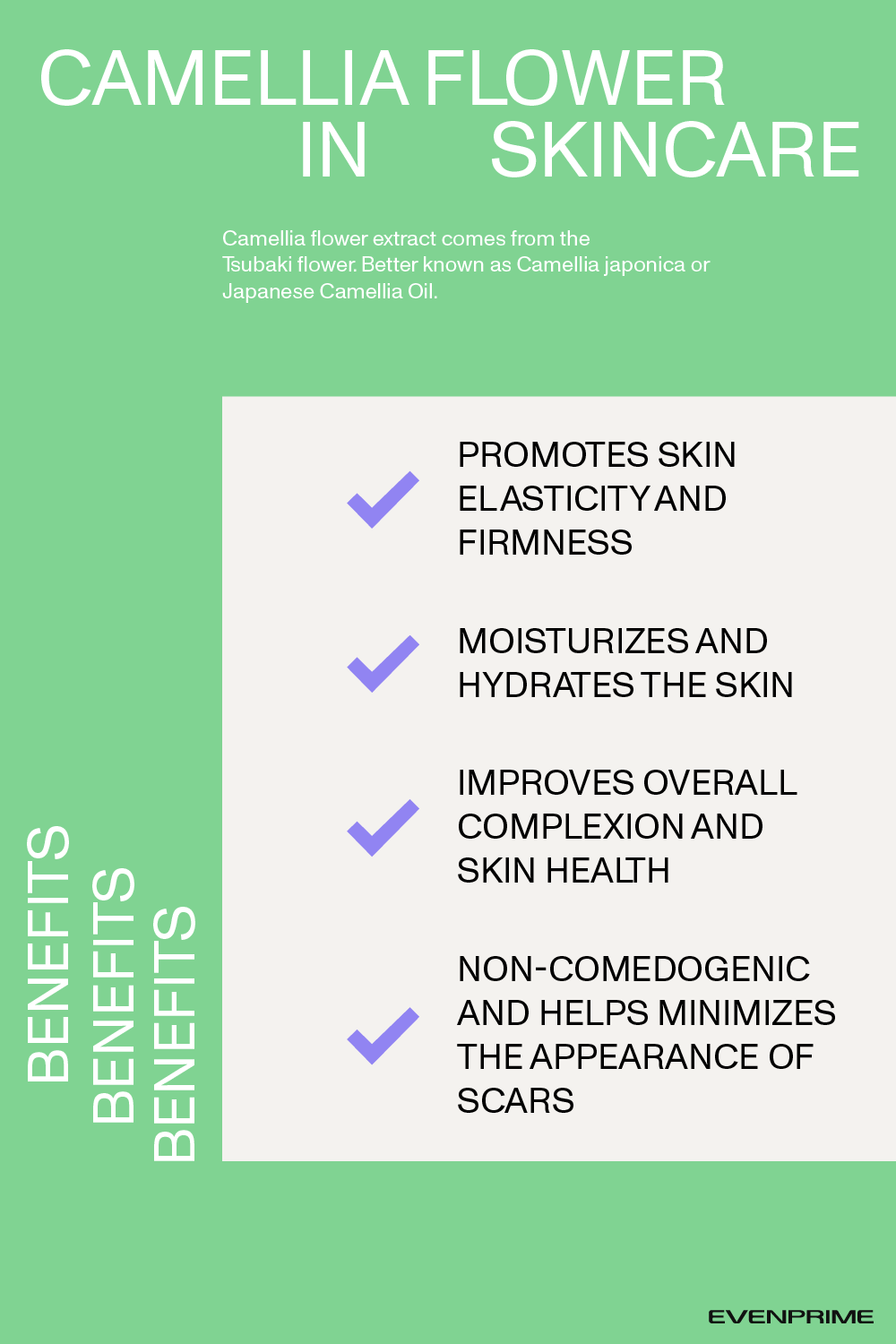Skincare Ingredients How To Read The Label In 2020 Skincare Ingredients Skin Care Skin Care Acne