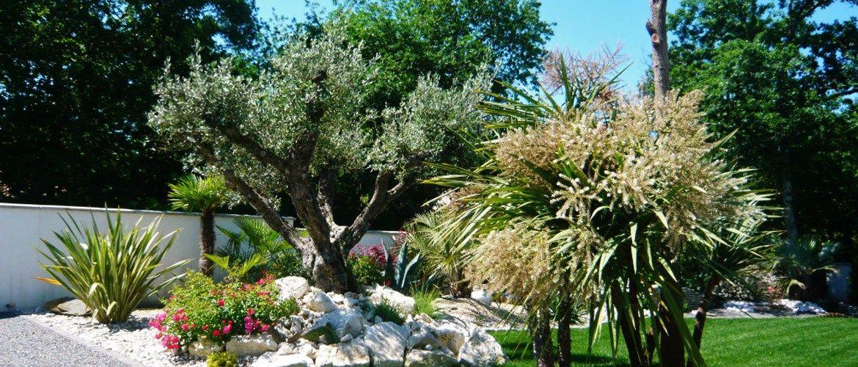 Massif Mediterraneen Et Rocaille Rodriguez Paysages Jardin Maison Jardins Paysagiste