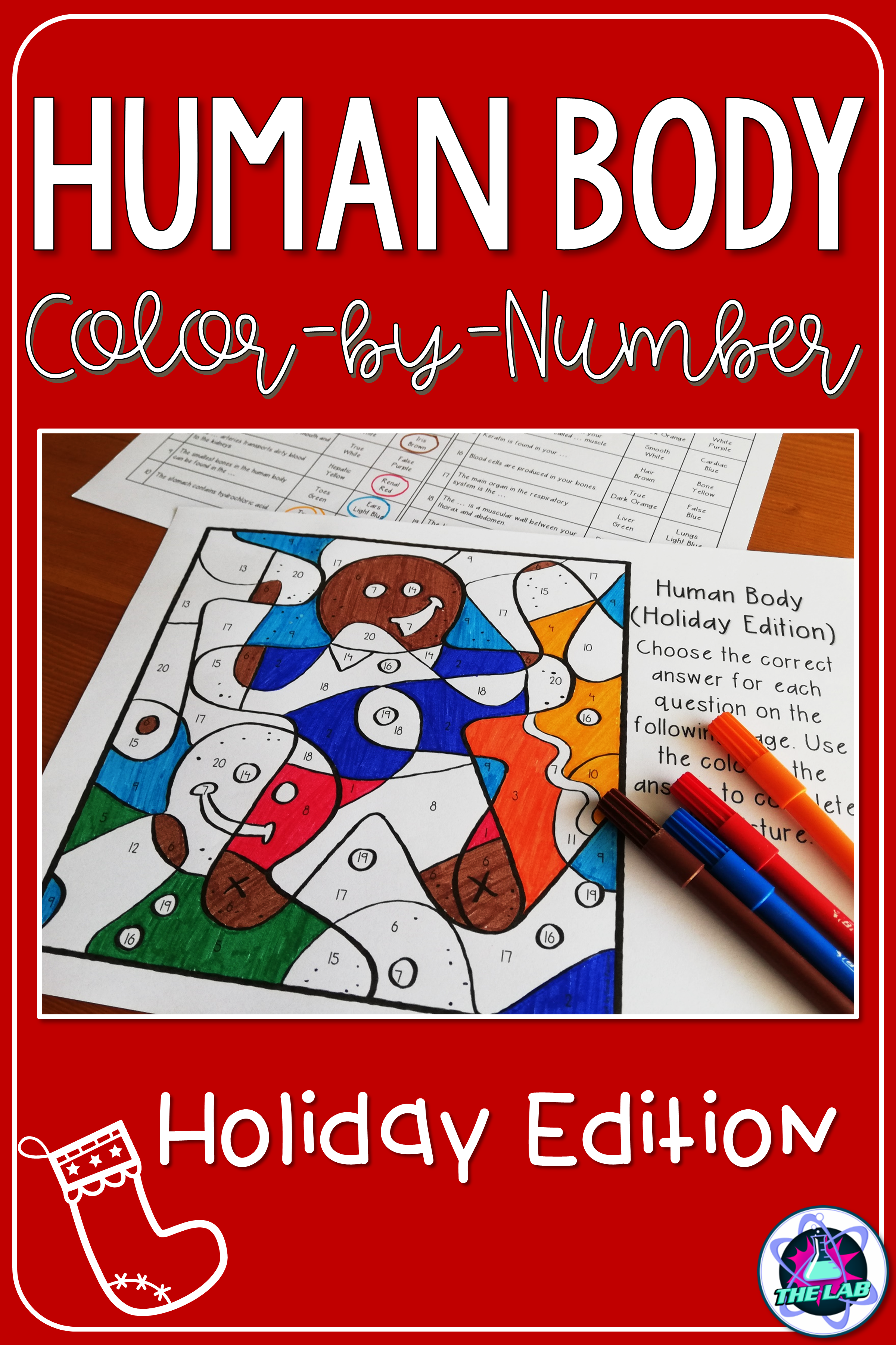 Holiday Themed Human Body Color By Number Activity