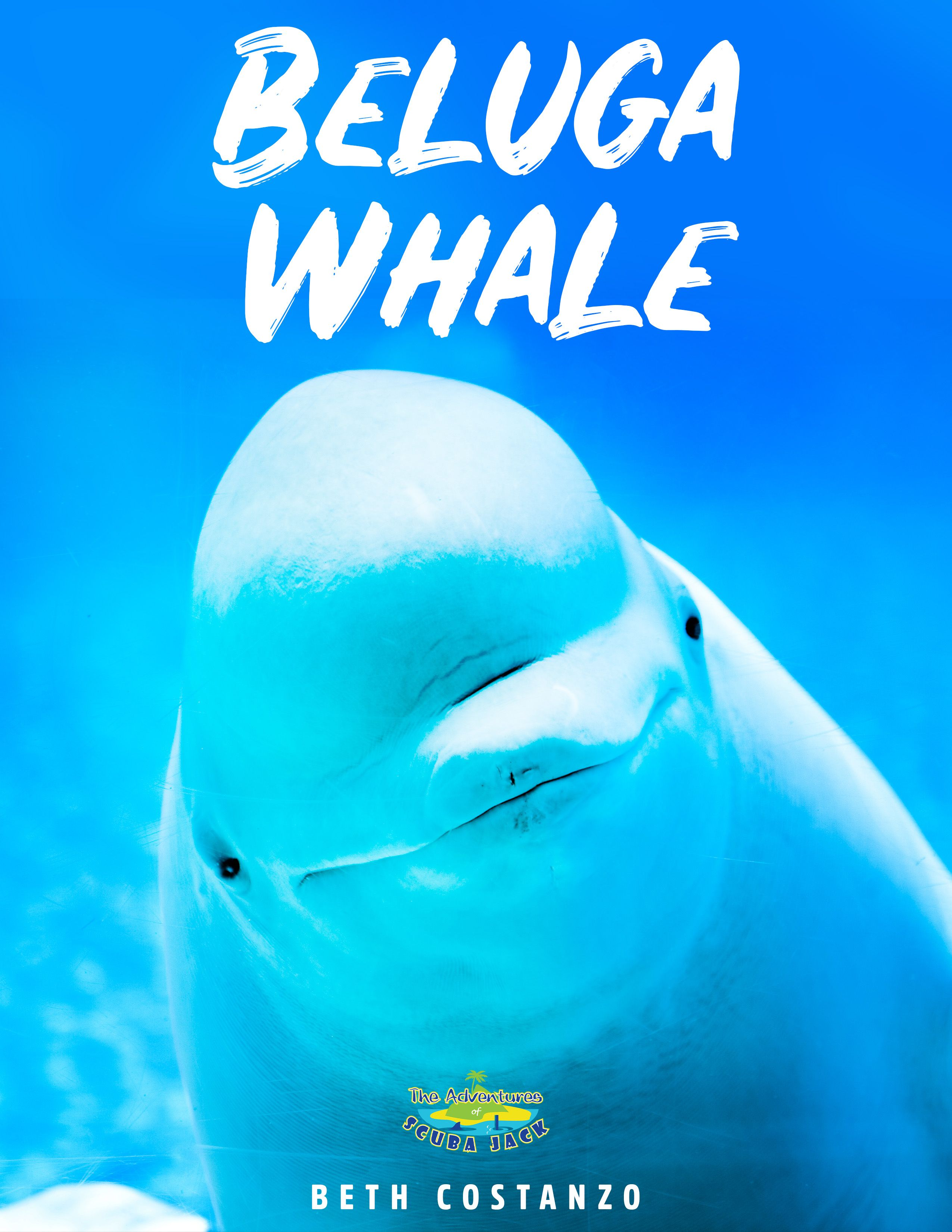 Beluga Whales Booklet For Kids In