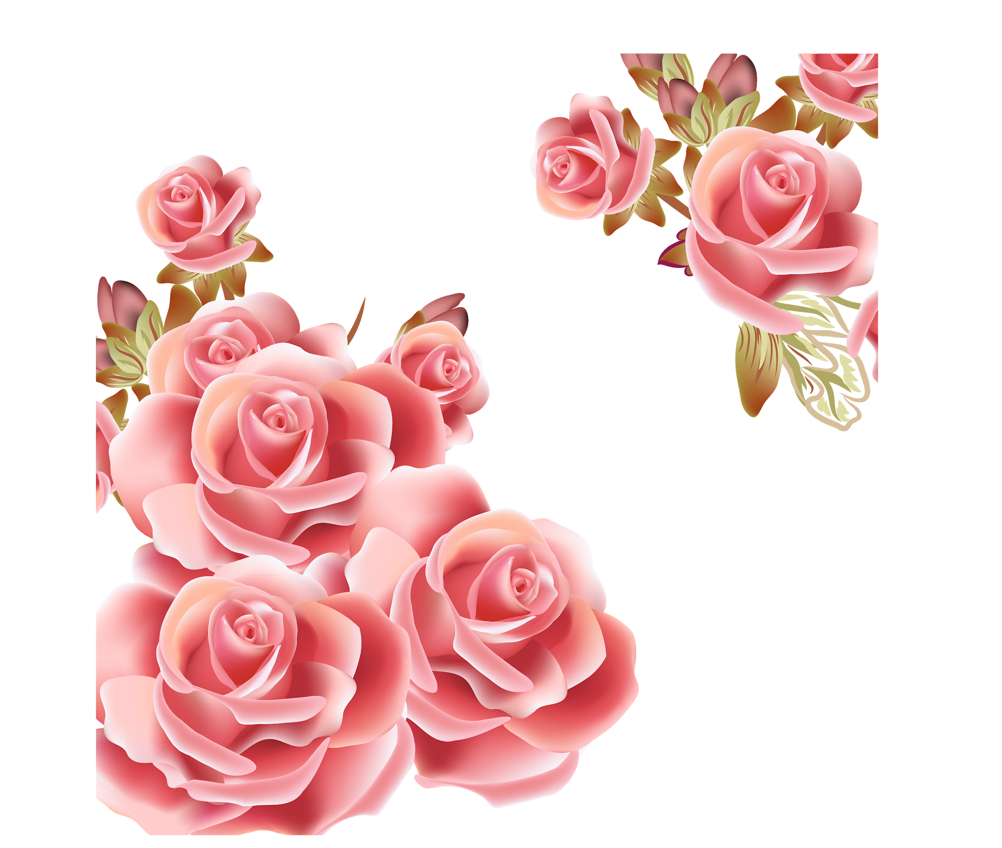 Pin By Pngsector On Bouquet Of Flower Rose Pink Flowers Pink Roses