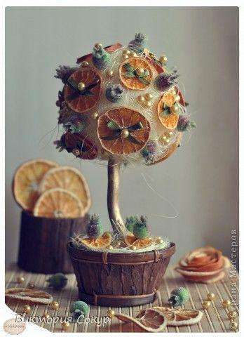 """Плодовые деревья """"Яблоко,апельсин""""!!!"""