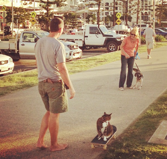 woman with dog meets man with cat, on a skateboard.