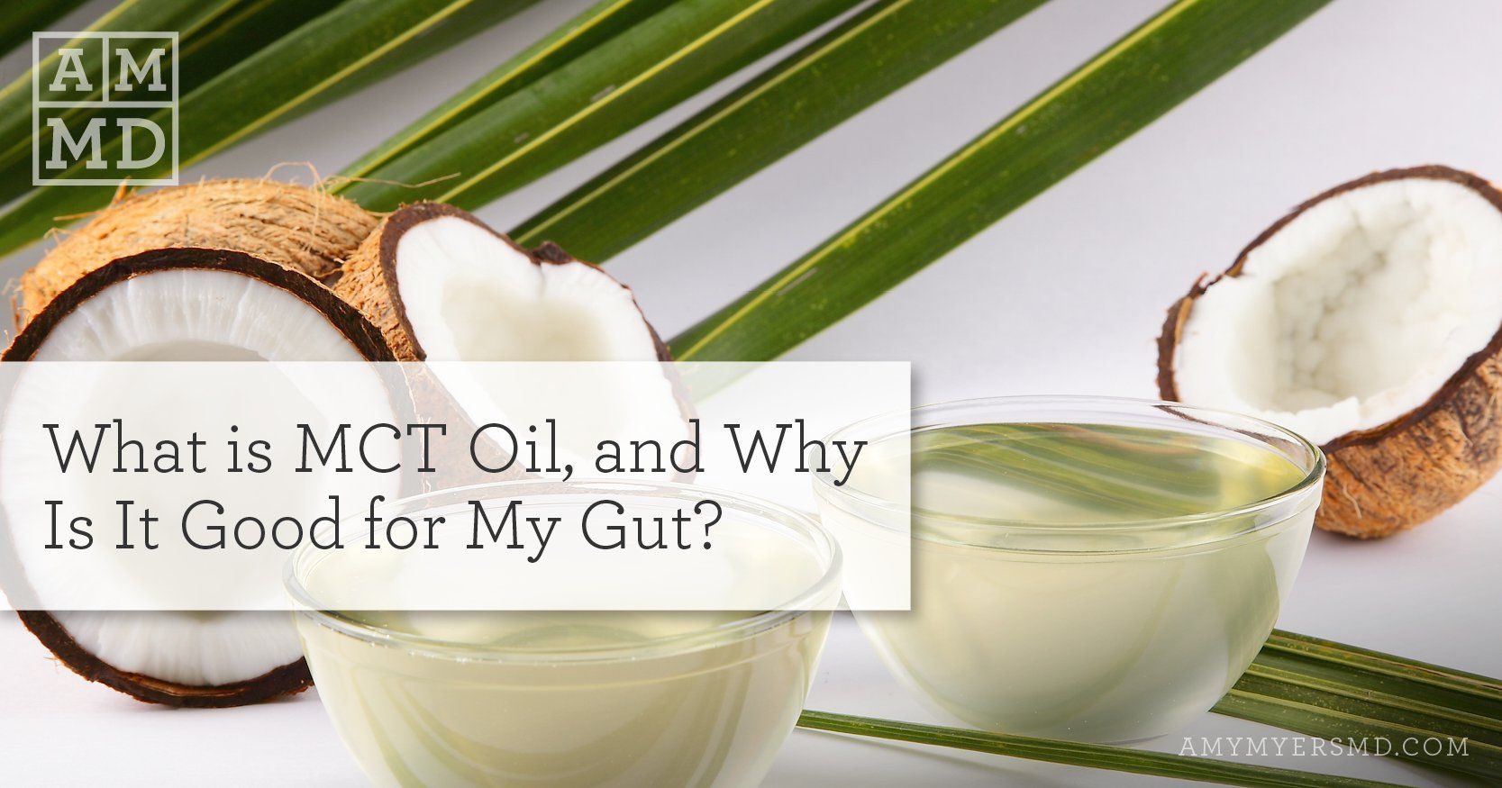 Mct oil why is it good for my gut amy myers md gut