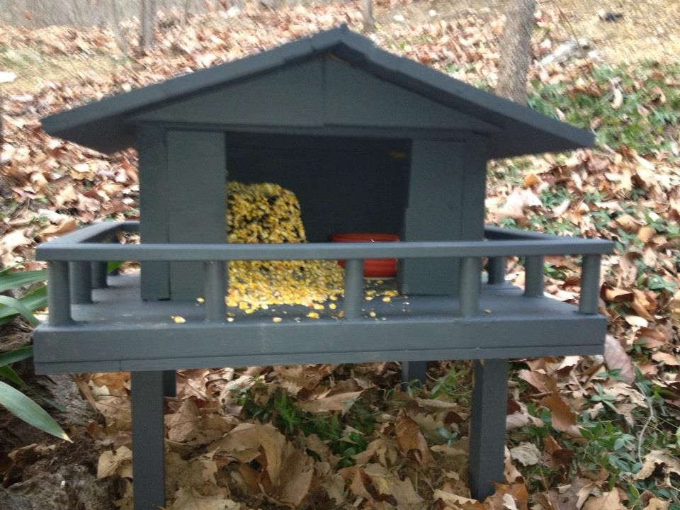 build squirrel house the emails are here after the jump