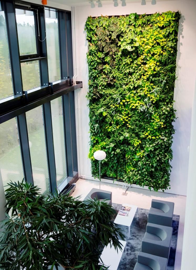Vertikaler Garten   #innenhofgestaltung