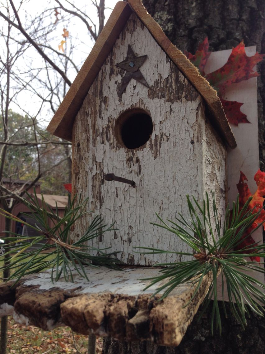 DIY bird house! Add your own touch with leaves and pines for the fall (: