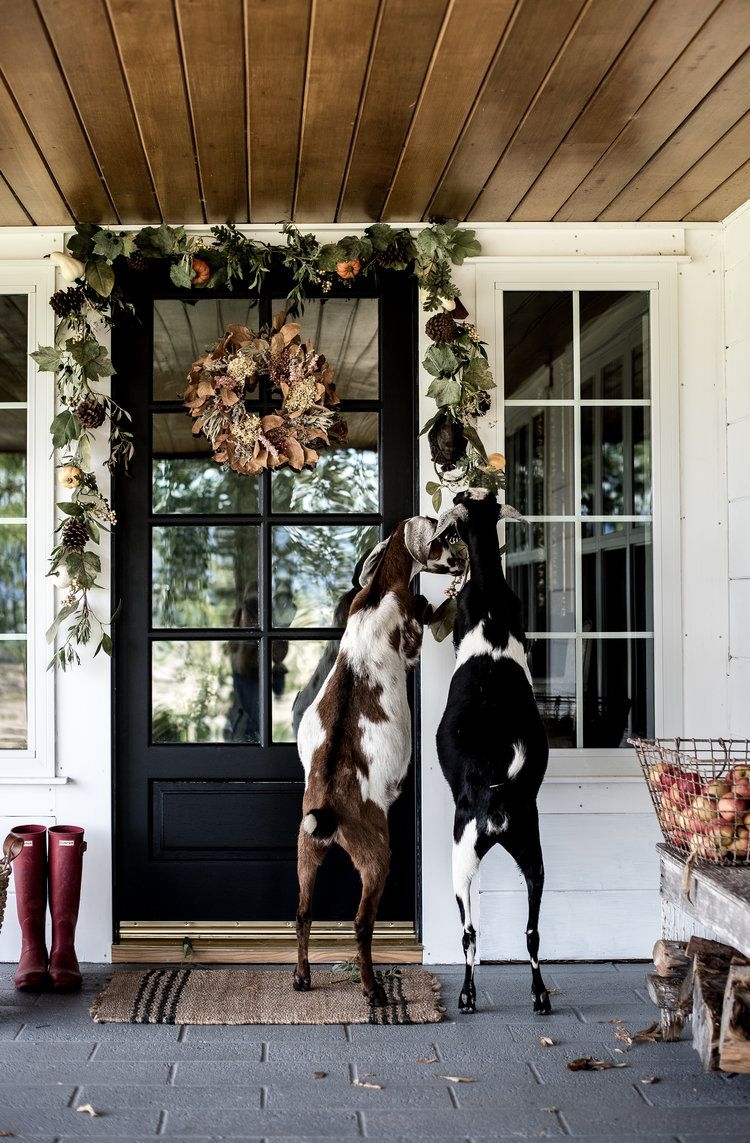 Simple Fall Decorating Ideas for your Front Porch House