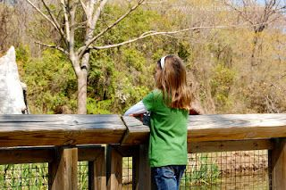 7 Fun Things To Do In Waco With The Kids Texas Must