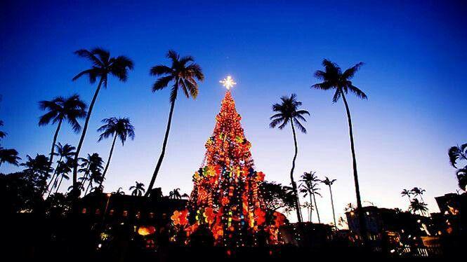 Christmas In Hawaii Images.Christmas In Hawaii Christmas Time Hawaiian Christmas