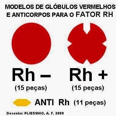 dieta para grupo sanguineo rh negativo
