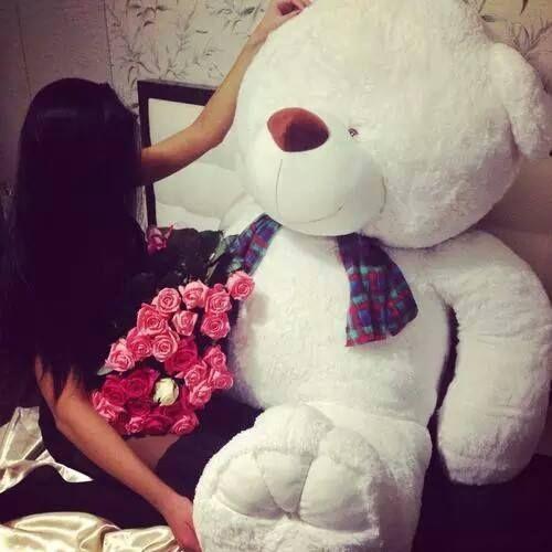 صور بنات ماسكه دباديب 2015 صور دب رومانسي مع ورده 2015 Big Teddy Giant Teddy Bear Big Teddy Bear