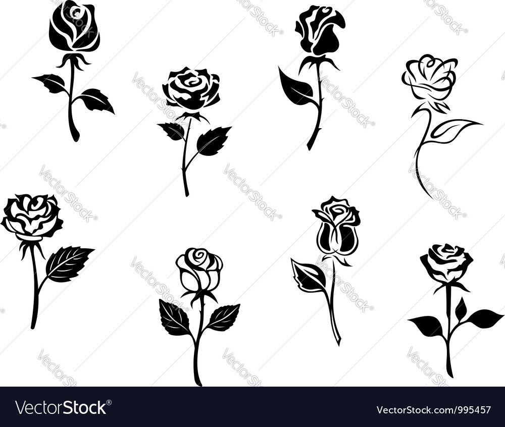 Rose Flowers Set Vector Image On Ideias De Tatuagem Pequenas