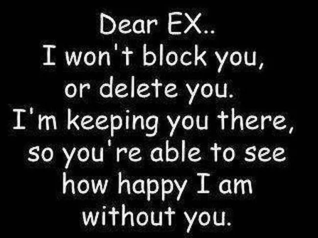 27 Funny Insult Memes To Send To Your Ex Ex Boyfriend Quotes Insulting Quotes Funny Quotes About Exes