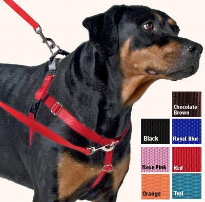 Freedom Harness No Pull Dog Harness Multi Use Velvet Lining