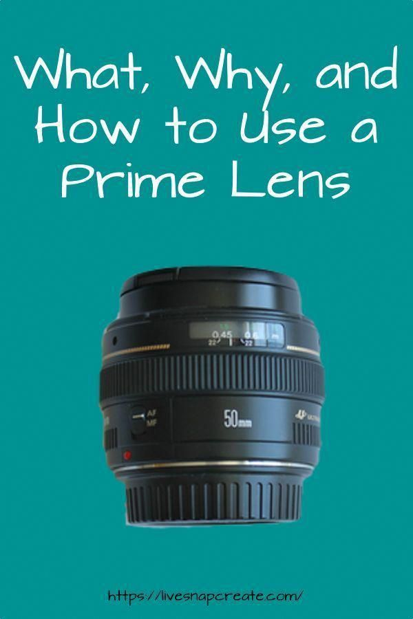 What Is A Prime Lens And Why Do You Need One For Your DSLR