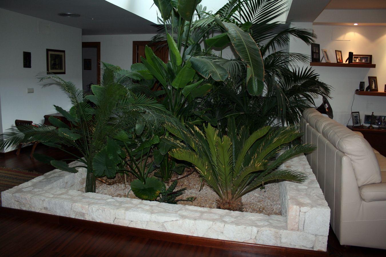 Jardinera Interior De Mamposteria Sin Derechos De Autor - Jardinera-interior