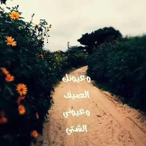 حبيتك بالصيف Adventure Is Out There Image Arabic Love Quotes