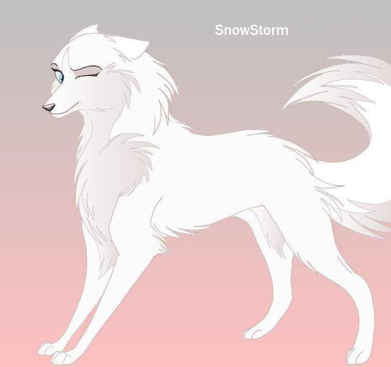 White Wolf Female Just Cuz Anime Wolf Wolf Anime Animals