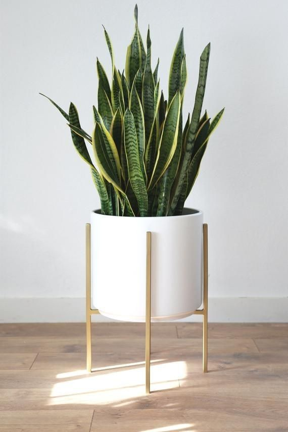 Modern Planter With Gilded Metal Plant Stand Mid Century 12