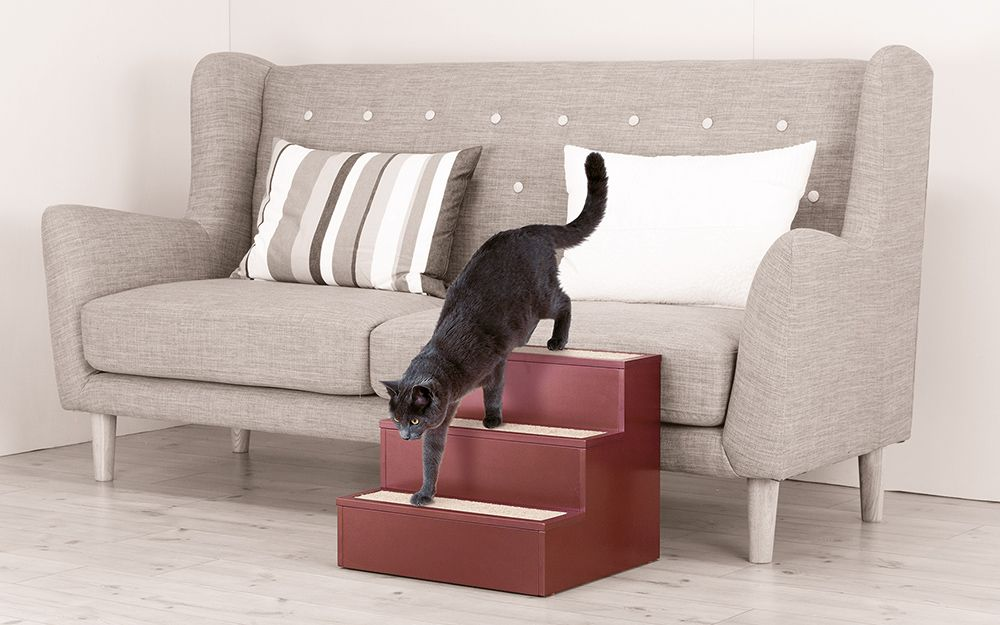 Cat using DIY cat steps to climb down from a sofa. in 2020