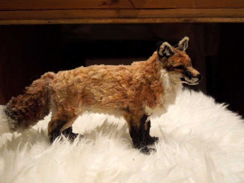 Incredibly Lifelike Animals Made from Pipe Cleaners «TwistedSifter