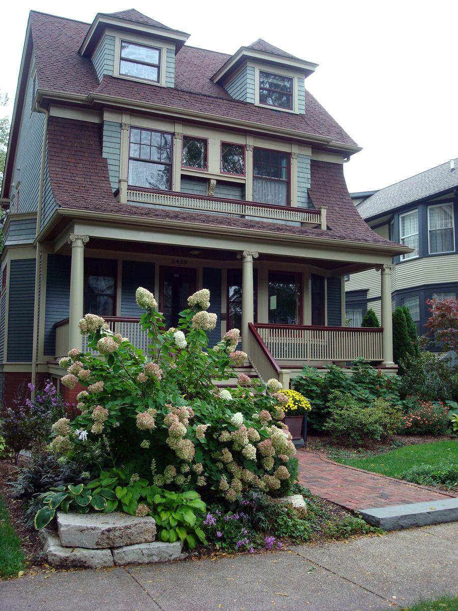 front yard limelight hydrangea