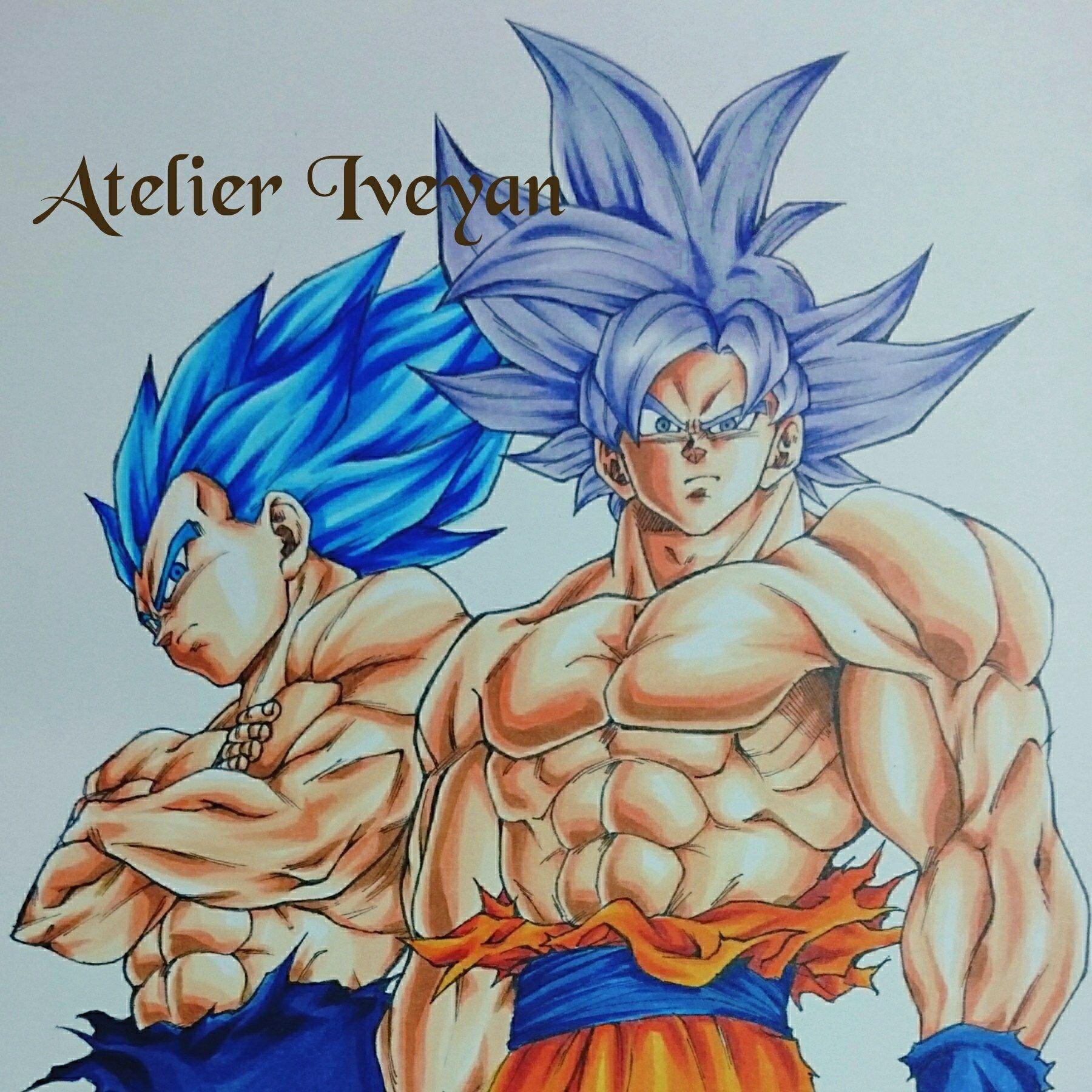 Ultra Instinct Goku And Super Saiyan Blue Evolution Vegeta Super Saiyan Blue Goku Super Saiyan God