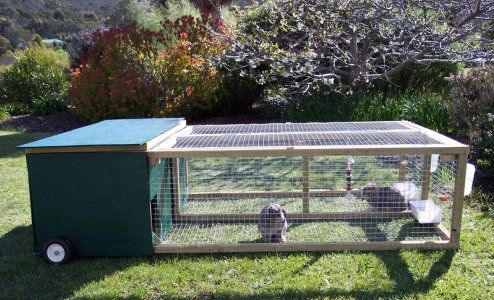 Unique New bunny owner.double bunny hutch is done! pix inside | Bunny  IB61