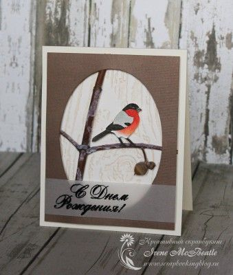 Winter birthday card. Colored image: bullfinch. Natural branch. Frost. Wood texture.