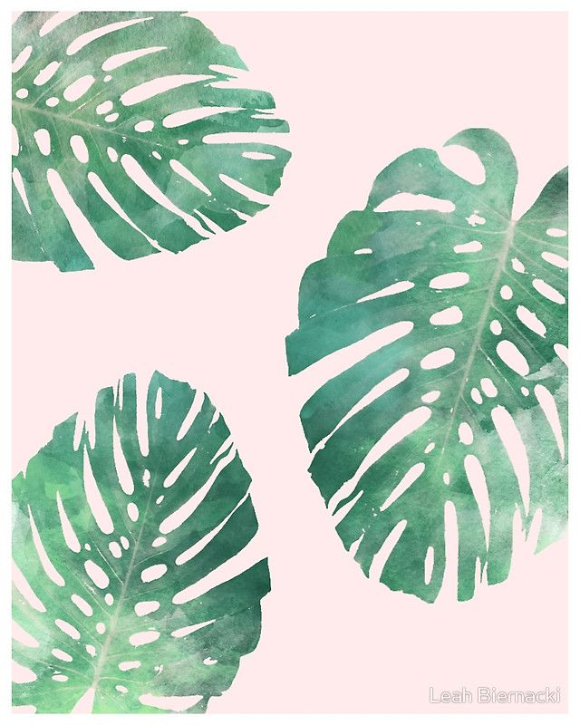 Watercolor Tropical Monstera Leaves On Pink Background Art Print