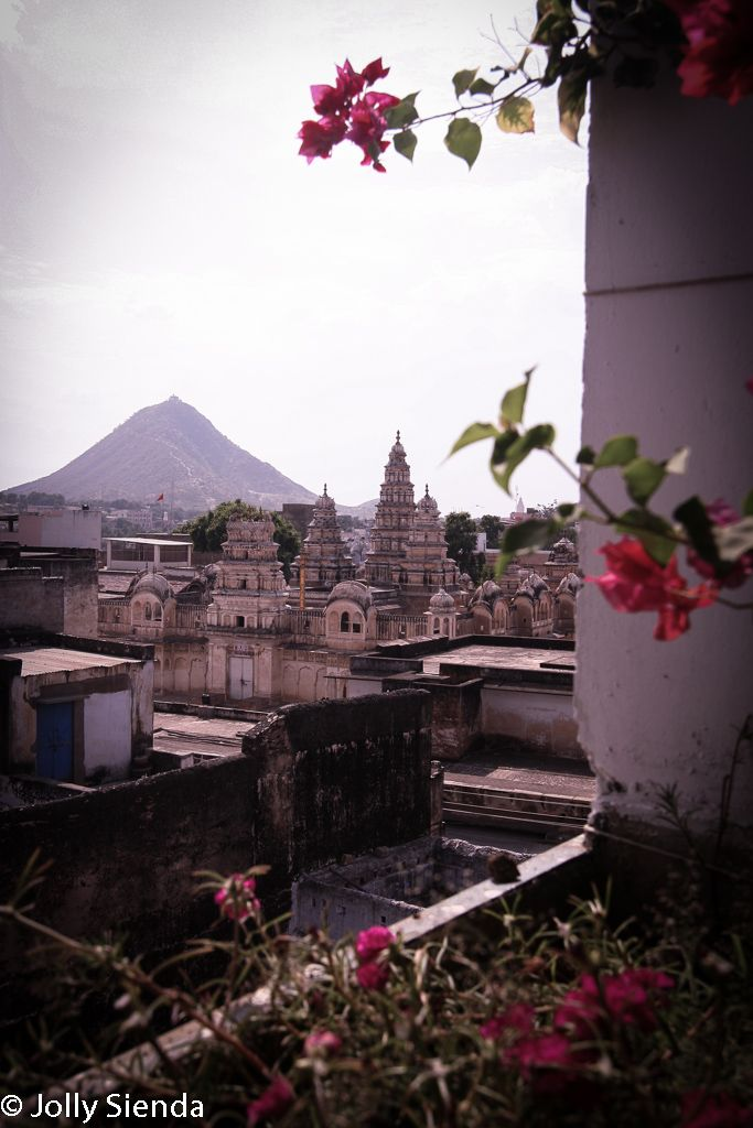 View of rooftops, a mountain, and bougainvilla flowers, Pushkar, India. Photo by Jolly Sienda Photography.