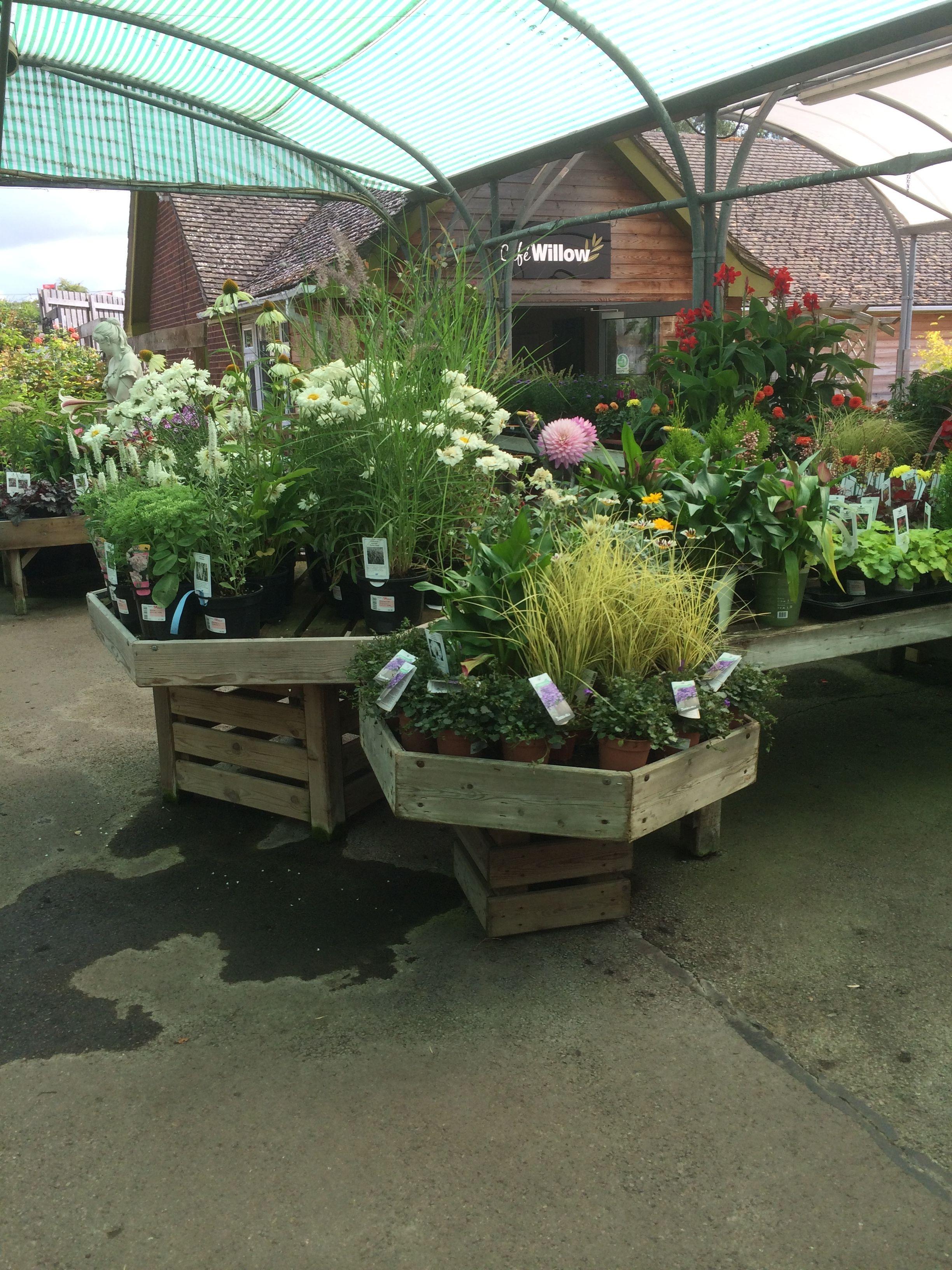 English Garden Garden Layout Container Gardening English Garden