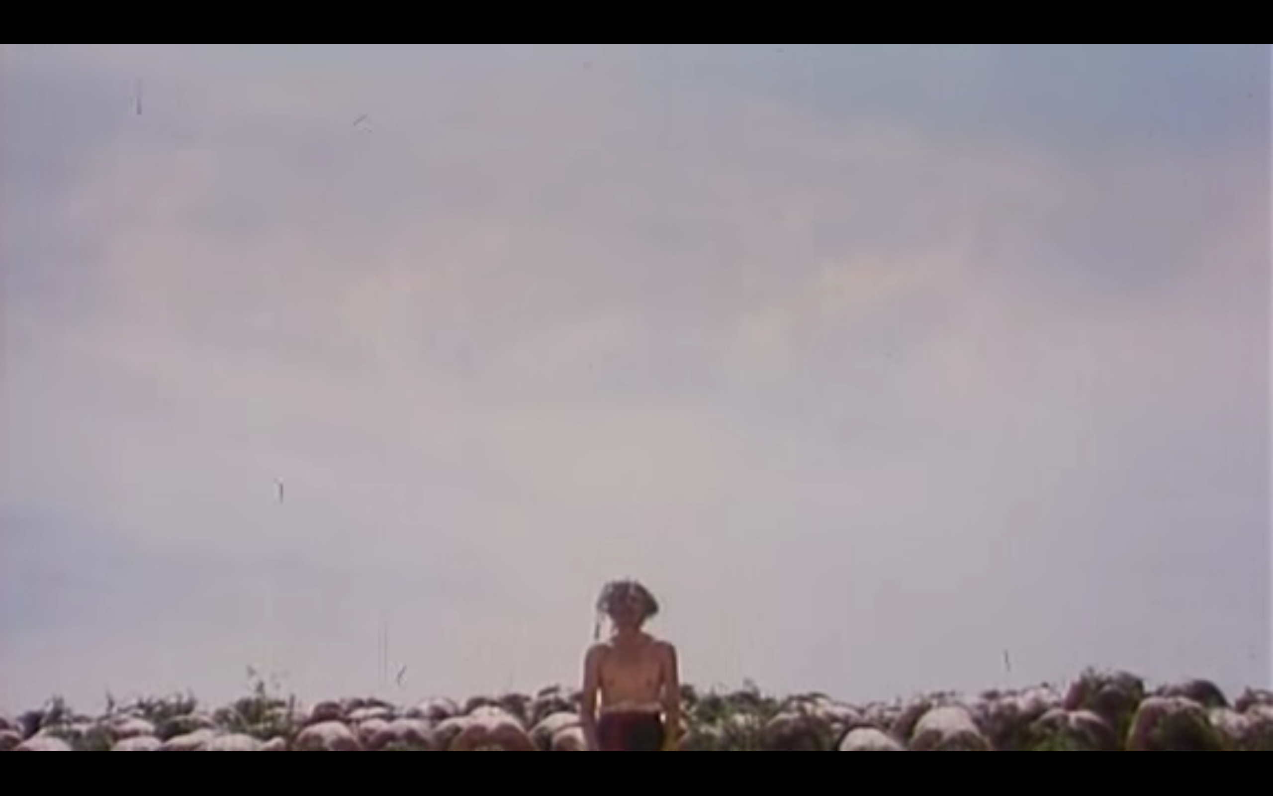 yellow earth movie